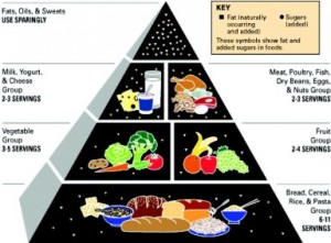 USDA Food Pyramid